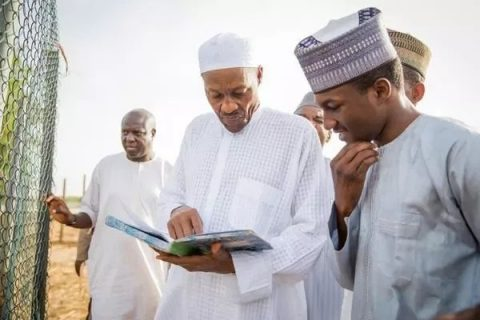 Pray For Buhari's Son, Frank Urges Nigerians