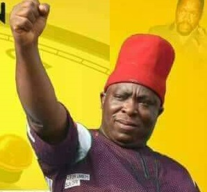 INEC Declares Chief Victor Umeh Winner With Over 64,000 Votes
