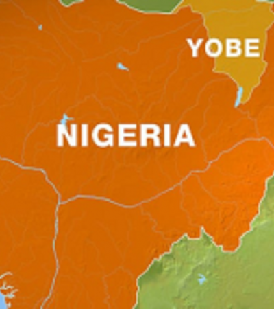 Yobe Govt recovers, hands-over 206 rustled cows to owners