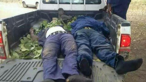 Fulani Herdsmen Kill Two Civil Defence Corps In Benue