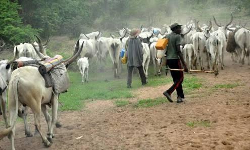 Police Confirms Fulani Herdsmen Killed 5 In Benue