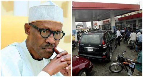 Quit As Petroleum Minister, PDP Tells Buhari
