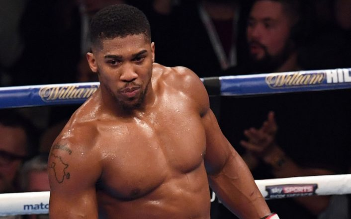 Joshua Is A Cash Cow, Promoter Milking Him – Wilder