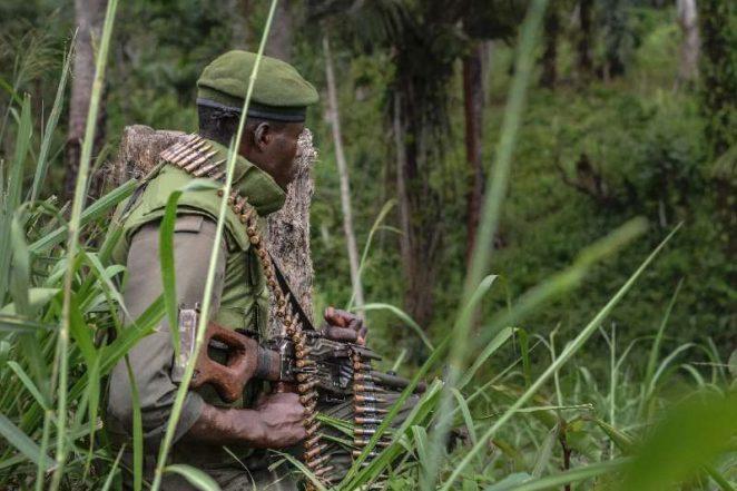 Congolese Army Kills 10 Ugandan Militia