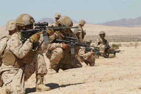 Arab NATO, the UAE Igniting the beginning of the Arab War