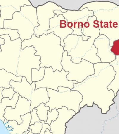 Borno set to key into FG's RUGA scheme