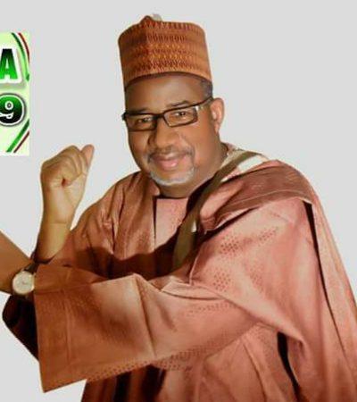 Bauchi State Deserves A Savior From Further Retrogression In 2019 – By Muhammad Dan Maryamu