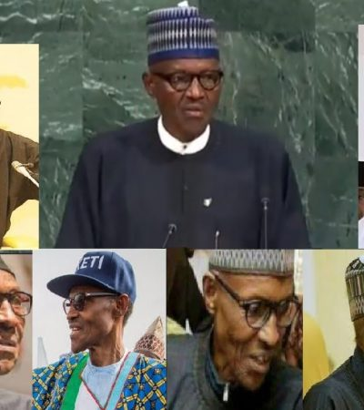 Jubril: Why I Am Confused On Buhari's Identity As Medical Doctor And Scientific Researcher