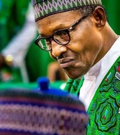2019 Elections: Opposition Can Wrangle, But Don't Misinterpret Buhari! – By Isaac Ikpa