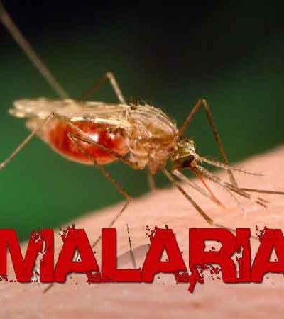 Malaria cases distracting us from our primary duties – UBTH CMD