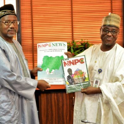 NNPC to Resume Oil Search in Chad Basin if It Gets Security Clearance