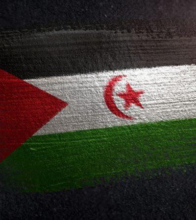 Buhari restates Nigeria's support for Sahrawi Republic