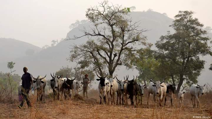 Ruga settlements for Fulani herdsmen will create breeding grounds for radical Islamic extremism and anti-Nigerianism – By Terfa Naswem