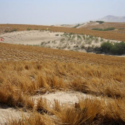 Desertification threatens livelihood of 40m Nigerians – Ministry of Environment