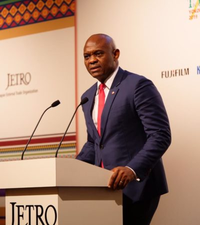 "Elumelu Challenges Japan – ""Partner us in Empowering African Entrepreneurs"""