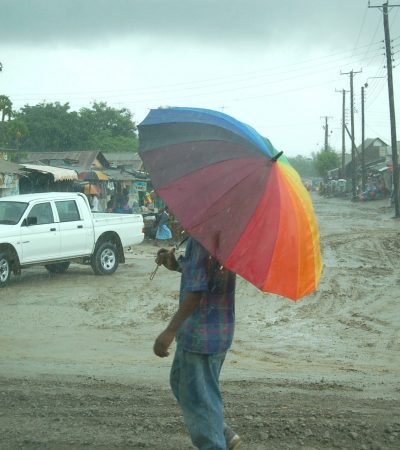 Rainstorm kills 4 children in Yola