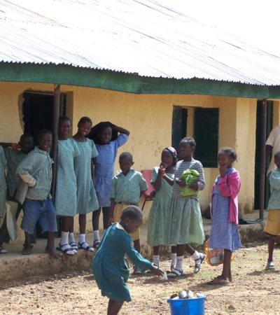 How Nigerian Elites Destroy Public Schools To Build Their Own – NAESN