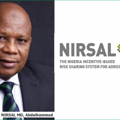 NIRSAL Infested By Nepotism And Corrupt Practices