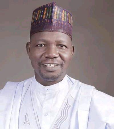 Bauchi to clear 3bn debt 20 local government areas – Zaki