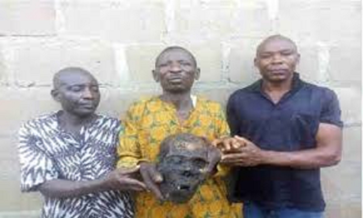 Image result for 3 men arrested for 'removing' human skull from public cemetery